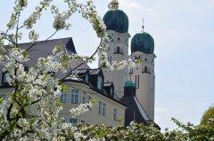 Gaestehaus-im-fruehling-DSC_0342.jpg